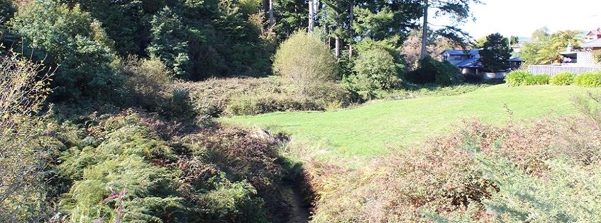 Linton Park link beginning point