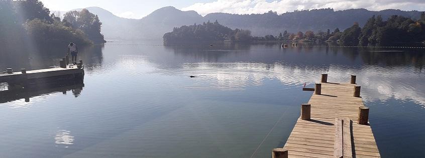 Lake Okareka upgrades update