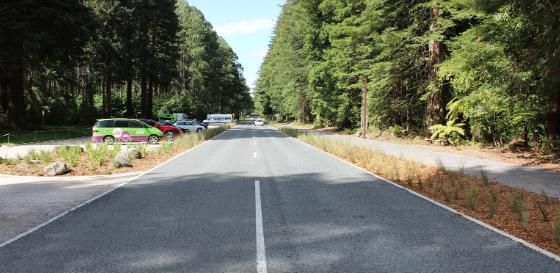 Long Mile Road