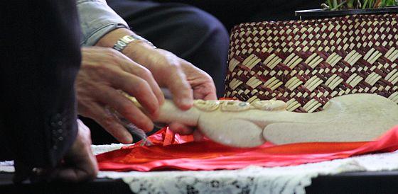 Te Arawa partnership patu